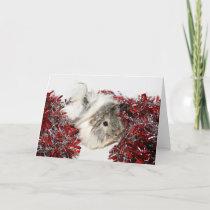 Christmas Guinea Pig Holiday Card