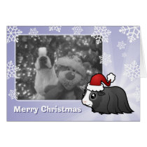 Christmas Guinea Pig (long hair) Card