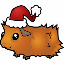 Christmas Guinea Pig Ornament (scruffy)
