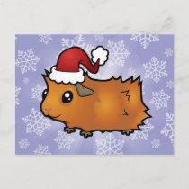 Christmas Guinea Pig (scruffy) Holiday Postcard