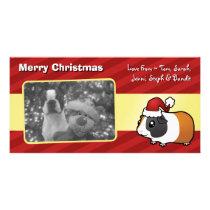 Christmas Guinea Pig (smooth hair) Card
