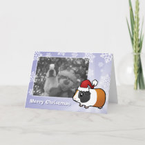 Christmas Guinea Pig (smooth hair) Holiday Card