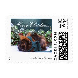 Christmas Guinea Pig Stamps