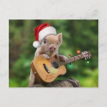 Christmas guitar pig postcard