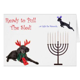 Christmas Hanukkah Poodle Dog w Menorah Greeting Cards