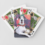Christmas - Harlequin Great Dane - Baron Card Deck