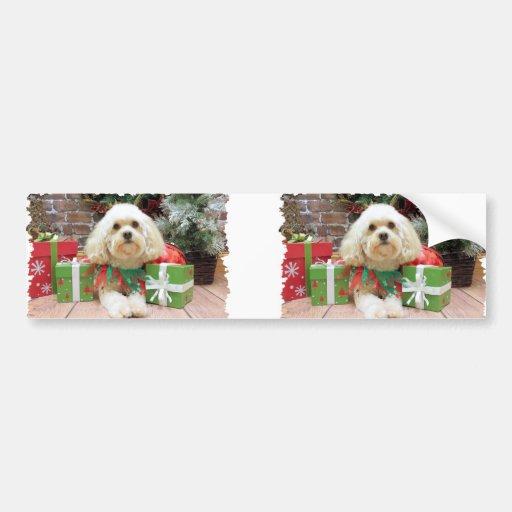 Christmas - Havanese - Mason Bumper Stickers
