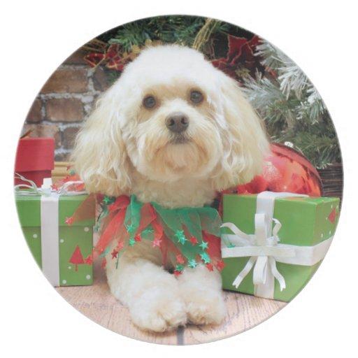 Christmas - Havanese - Mason Plates