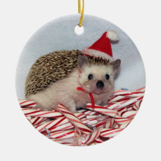 Christmas Hedgie Ornament