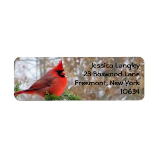 Christmas holiday cardinal branch address labels