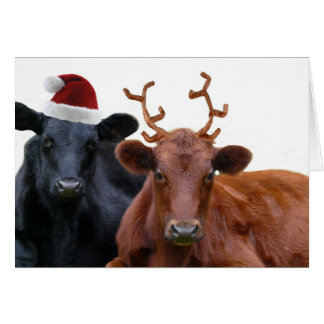 Christmas Holiday Cows in Santa Hat and Antlers Card