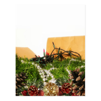 Christmas Holiday Decorations in Box Postcard