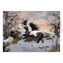 Christmas Holiday Gypsy Vanner Horse Card