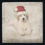 "Christmas Holiday - Pyr Puppy Santa Hat Stone Coaster<br><div class=""desc"">Christmas Holiday - Pyr Puppy Santa Hat - Choose your texture</div>"