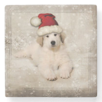 Christmas Holiday - Pyr Puppy Santa Hat Stone Coaster