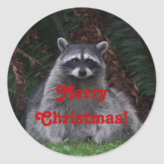 Christmas Holiday Raccoon Photo Sticker