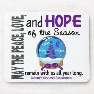 Christmas Holiday Snow Globe 1 Crohn's Disease Mousepads