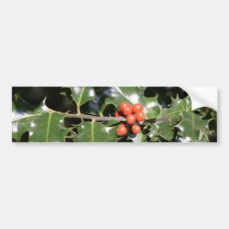 Christmas Holly Berries Car Bumper Sticker