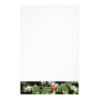 Christmas Holly Berries Stationery Design