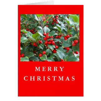 Christmas Holly Greeting Card
