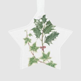 Christmas Holly & Ivy Botanical Star Ornament