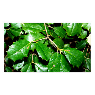 Christmas Holly Leaves Business Card
