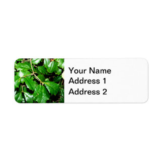 Christmas Holly Leaves Label