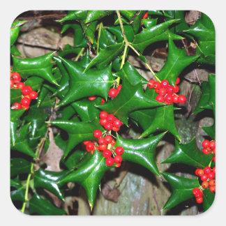 Christmas Holly Square Sticker