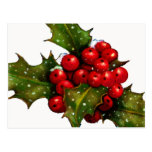 Christmas Holly With Berries and Snow: Art Postcards
