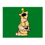 christmas honey bear post cards