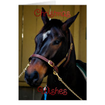 Christmas horse animal merry xmas happy holidays card