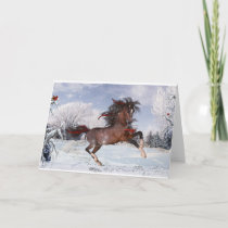Christmas Horse Arabian Card