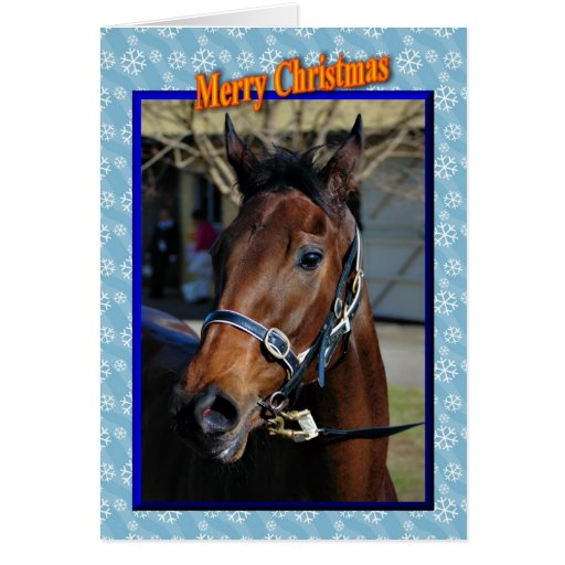Christmas horse Happy holidays xmas animals Greeting Cards