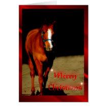 Christmas Horse Merry Christmas xmas Card