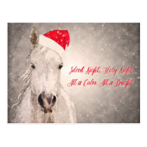 Christmas Horse PostCard Holiday Greetings