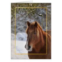 Christmas horse under the mistletoe card