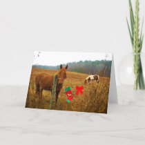 Christmas Horse with bow and stocking Holiday Card