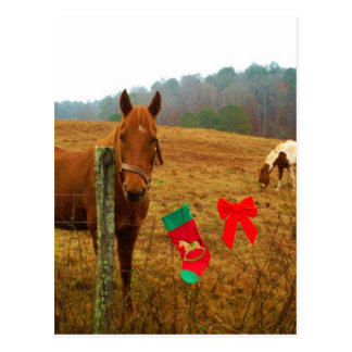 Christmas Horse with bow and stocking Postcard