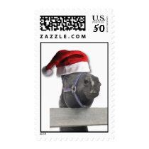 Christmas Horse With Santa Hat Postage