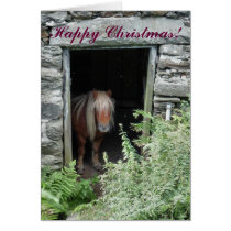 CHRISTMAS HORSES AND PONIES CARD