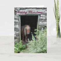 CHRISTMAS HORSES AND PONIES HOLIDAY CARD