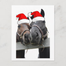 Christmas Horses Holiday Card