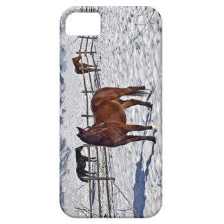 Christmas Horses In Bozeman iPhone SE/5/5s Case