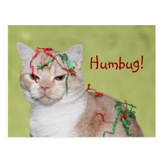 Christmas Humbug cat Postcard