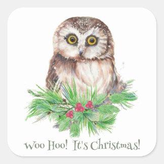 Christmas Humor Quote Cute Owl Bird Square Sticker