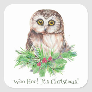 Christmas Humor Quote Cute Owl Bird Square Stickers