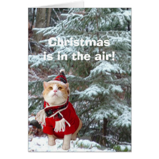Christmas is in the Air! Card