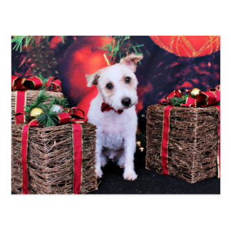 Christmas - Jack Russell - Wiley Postcard