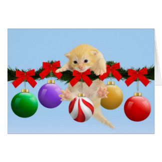 Christmas kitten card