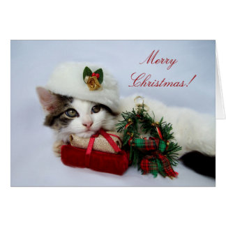 Christmas Kitten Card